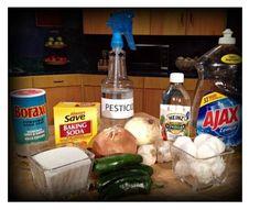 Homemade Pesticides http://www.moneysavingqueen.com/March-2012/Frugal-Living-Homemade-Pesticides/