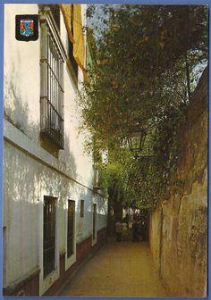 "120 ""Sevilla típica. Callejón del agua""."