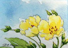 Acuarelas de: RoseAnn Hayes,  del  blog Watercolor Paintings by RoseAnn Hayes