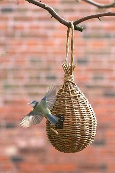 'Teardrop' willow bird feeder project - As featured in book: Willow Craft 10 Bird Feeder Projects