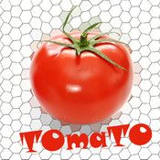 'TOmaTO' is an educational application for teaching children (1-15 years) fruits and vegetables, providing images and speech, in several languages (English, Spanish and French).  In this powerful interactive picture book with sounds, referencing more than 70 fruits & vegetables, touching the image will display the name of the fruit / vegetable, and have it pronounced in the chosen language.  The language in which the name is read and displayed can be selected at any time simply by clicking…