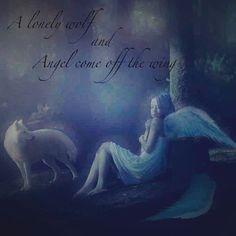 Wolf and Anjel