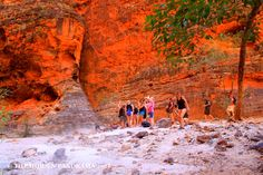 Discovery : Cathedral Gorge (of The Bungle Bungles) Antelope Canyon, Discovery, Cathedral, National Parks, Nature, Travel, Naturaleza, Viajes, Cathedrals