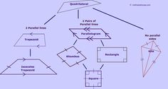 Geometry hierarchy of quadrilaterals worksheet my teachers pay the quadrilateral family tree ccuart Choice Image