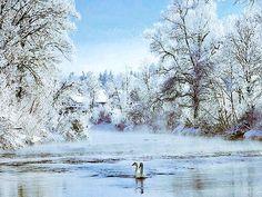 El país de los míl lagos. Finlandia