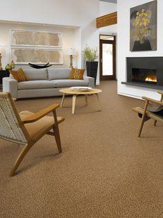 Beautiful brown carpet display
