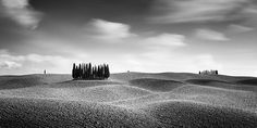 Black And White Landscape, Black N White Images, Black White, Fine Art Photography, Landscape Photography, Panorama Camera, River Monsters, Cypress Hill, Tuscany Italy