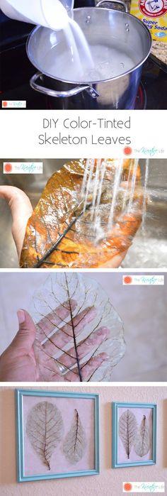 DIY Color-Tinted Skeleton Leaves