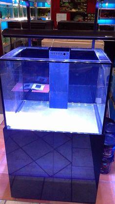 Fastway Aquarium  New aquareef tanks in stock !    Fastway Aquarium & Hydroponics  Local Aquarium Store