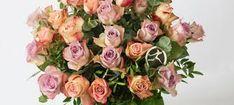blomster – Google Søk