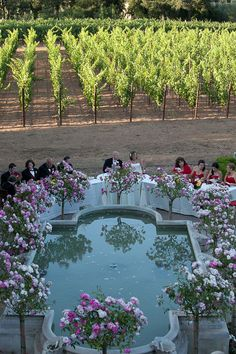 Weddings in the Sonoma Wine Country can be simple or grand with our links to wedding venues and reception services. photo by DUphotography