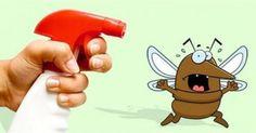 Ενώ υπάρχουν πολλά ισχυρά εντομοκτόνα που υπόσχονται να κρατήσουν τα έντομα μακριά, δεν είναι απαραίτητα καλό για εσάς και τους αγαπημένους σας! Οι ισχυρές