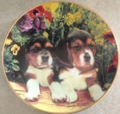 Puppies and Posies Franklin Mint Collectible by mackinacislandgirl Franklin Mint, Etsy Vintage, Dog Food Recipes, Dawn, Puppies, Plates, Animals, Collection, Licence Plates