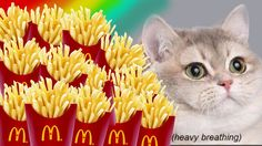 Me: Can I put an image of a cat next to French fries on my debit card? Wells Fargo: umm… I guess?