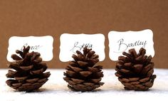 Pinecone place card holders | Easy Décor Ideas For A Thanksgiving Wedding Or Event | Green Bride Guide