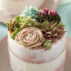 Succulent Cakes Learn how to use the decorating tips in your collection to create amazing blooming succulents. Great for tea parties, birthdays, bridal showers and weddings, these stunning mini cakes are a great way to showcase your decorating skills. Cake Decorating Designs, Cake Decorating Techniques, Cake Designs, Decorating Ideas, Creative Cake Decorating, Pretty Cakes, Beautiful Cakes, Amazing Cakes, Decoration Patisserie