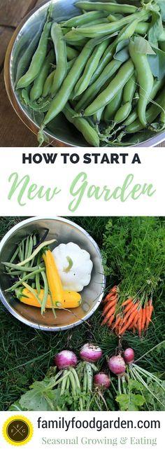 Plan & Design your first garden!