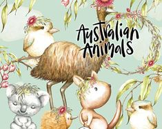 Buy Now Australian animals clipart watercolor Kangaroo Koala. Watercolor Images, Watercolor Animals, Watercolour, Nursery Prints, Nursery Art, Cute Australian Animals, Australian Nursery, Australian Art, Baby Portraits