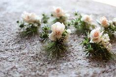 Rose 'Margaret Merril', Eryngium and Panicum grass buttonholes.
