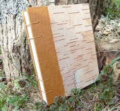 Birch Bark  Handbound Journal:  I like the softer colors of this birch bark.  Reminds me of old parchment.  Green would be a nice accent color, too.