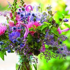 Grow a great cutting garden - plus a list of favorite cut flowers, organized by color.