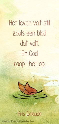Kris Gelaude - Een leven valt stil - Illustratie Joke Eycken