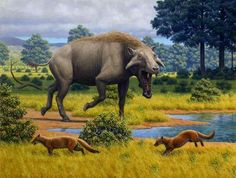 Although superficially pig-like, Archaeotherium, along with all other entelodonts, was more closely related to anthracotheres, hippopotamuses, and whales. By Mauricio Anton