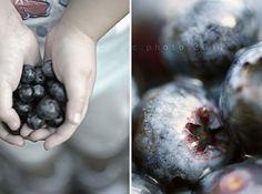 ♥ blueberries