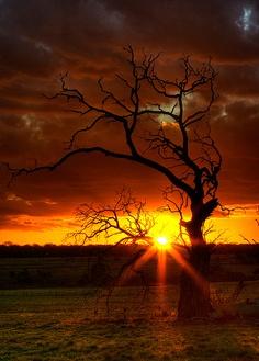 melbourne, australia, sunset