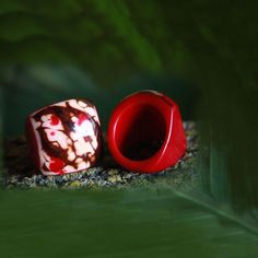 Terra Natural Jewelry, Red Tagua Carved Ring (Pre-Order Item. June Delivery)