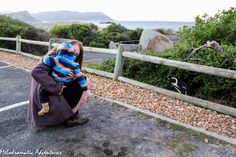 an instant of life captured for eternity - Melodramatic Adventures Sober, Cape Town, Pretty Flowers, Penguins, Adventure, Life, Beautiful Flowers, Penguin, Adventure Movies