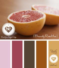 025 Brandy Rose Hue