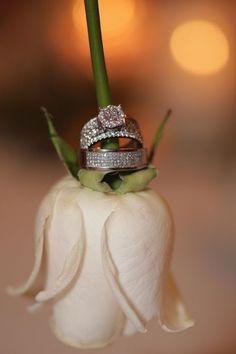 Our wedding rings. Picture idea 🙂 Our wedding rings. Wedding Couple Poses, Pre Wedding Photoshoot, Wedding Shoot, Wedding Couples, Our Wedding, Wedding Bands, Trendy Wedding, Wedding Scene, Church Wedding