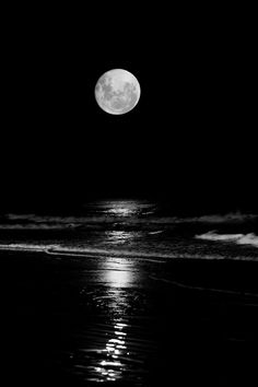 Full Moon / Ocean / Black and White Photography Moon On The Water, Moonlight Photography, Shoot The Moon, Moon Pictures, Full Moon Photos, Planet Pictures, Moon Rise, Moon Moon, Moon Magic