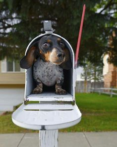 You got mail!!!