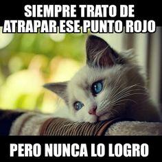 Una vida dura para un simple gato        Gracias a http://www.cuantocabron.com/   Si quieres leer la noticia completa visita: http://www.estoy-aburrido.com/una-vida-dura-para-un-simple-gato/