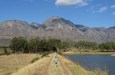 Travel: exploring South Africa with toddlers www.babylondon.co... #momzntotzzone #parenting101 #toddlermom #parenting #parenthood #expectingmom #toddlertravels #toddleractivities #toddlerhood #famillife #familybond #toddlerlife #happyfamily #toddlerfun #toddler #motherhood #parentingclasses #life #toddlers #toddlersofinstagram #kids