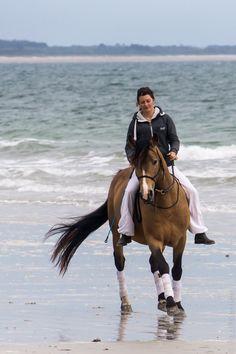 #Finistere #Bretagne #cheval #bigouden #ethologie équestre à Ile-Tudy (10 photos) © Paul Kerrien  http://toilapol.net