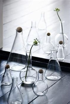 http://www.thefoxesden.co.nz/products/lab-beaker