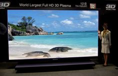 "Panasonic ""TH-152UX1"" - wall mount/floor stand(?) - 152"" - Plasma"