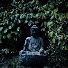 Buddha at Tokeiji Temple, Japan by Tae-ko.