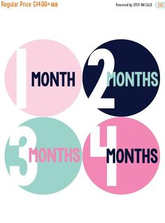 Monthly Baby Stickers Baby Month Stickers Baby by MonthsinMotion
