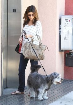 Jamie-Lynn Sigler Photos - Jamie Lynn Sigler Shops With Her Dog - Zimbio