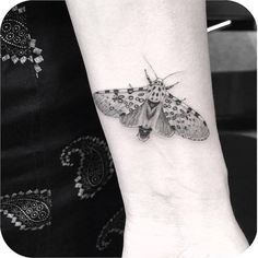 tattoo of a realistic moth on wrist by Dr Woo
