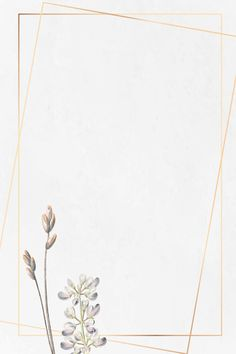gold frame with half shrubby Gold Abstract Wallpaper, Gold Wallpaper Background, Framed Wallpaper, Cute Wallpaper Backgrounds, Flower Backgrounds, Flower Wallpaper, Background Patterns, Iphone Wallpaper, Pinterest Color
