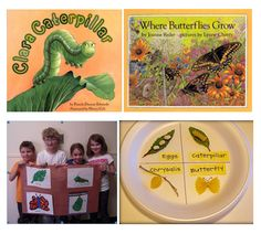 To address NGSS PE 3-LS1-1, students can use the information in these books to create various kinds of butterfly life cycles.
