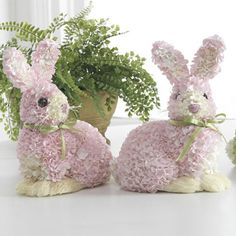 hydrangea bunny rabbits.