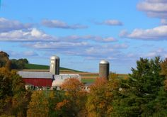 Schoharie County, NY ... There isn't a more beautiful place on earth. Come see us!