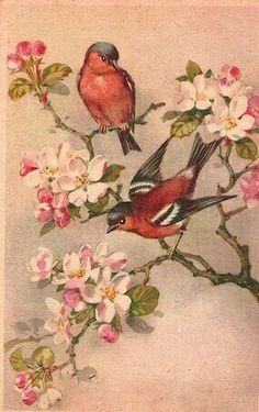 bird art- red birds on dogwood branches Art Floral, Fabric Painting, Painting & Drawing, Vintage Images, Vintage Art, Dogwood Tattoo, Dogwood Trees, Pink Dogwood, Painting Antique Furniture