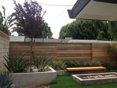 Drought Resistant Backyard Landscaping